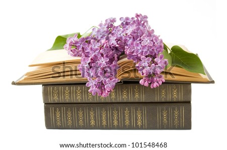 Teacher day (book pile and lilac flowers isolated on white)