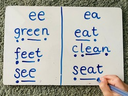 Teaching Phonics Alternatives Vowels Digraphs Spellings Using Sound Buttons