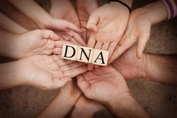Team Holding Building Blocks spelling out DNA