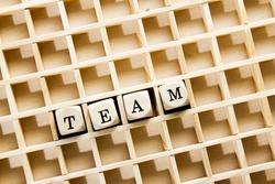 Team - word concept on letter blocks