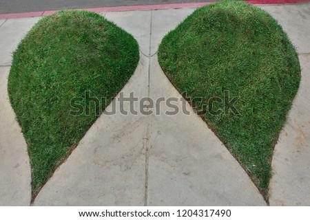 tear shaped grassy knolls #1204317490