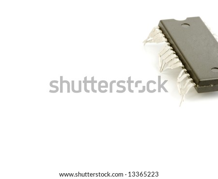 technology isolated computer electronic chip on white background with its pins as legs of a live worm