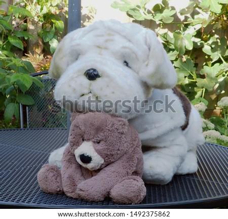Teddy bear and cuddly toy bulldog furry friends #1492375862