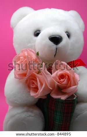 Teddy Bear Valentines Day. stock photo : teddy bear and