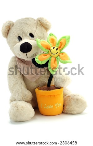 Teddy bear and smiling flower with I Love You message