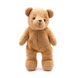 Teddy bear doll isolated on white background.