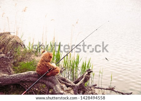 Teddy bear fisherman. Brown teddy bear sits by the lake with a fishing rod and catches fish. Summer nature idyllic landscape #1428494558