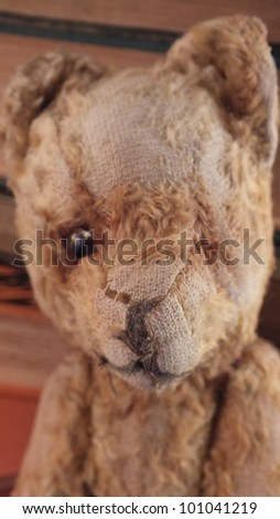 Teddy bear, head of an antique teddy bear, old and worn