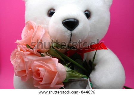 Pink Roses With Teddy Bear Teddy Bear Holding Pink Roses