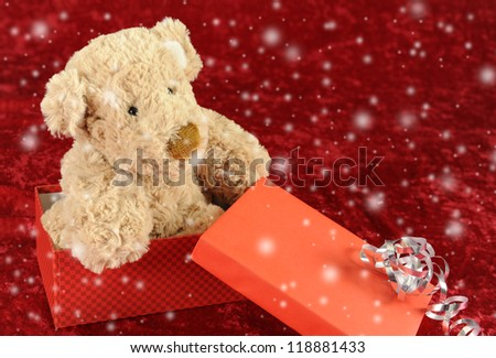 Teddy bear in gift box on red background