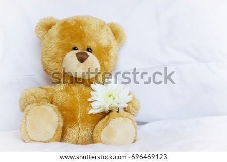 Teddy bear is holding flower on white background #696469123