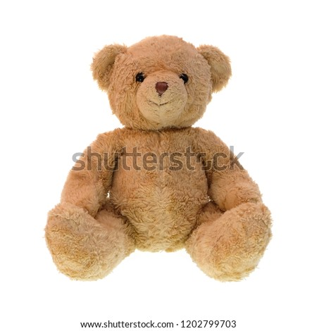 Teddy bear isolated on white background. #1202799703