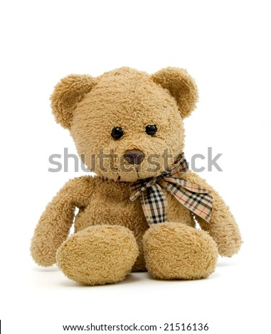 teddy bear on a white background with clipping path