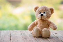 Teddy Bear toy alone on wood