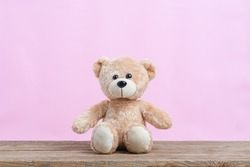 Teddy Bear toy alone with light pink background