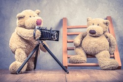 Teddy Bear toy photographer with old retro outdated film camera making photo shoot of model on wooden ladder concept. Vintage instagram style filtered photography