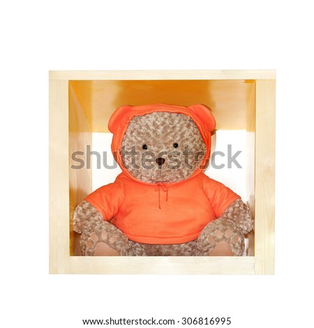 Teddy bear wearing orange shirt isolated on white background. This has clipping path. #306816995