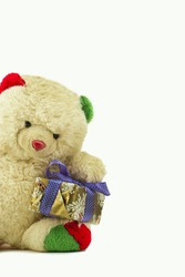 Teddy bear with a pack of gift
