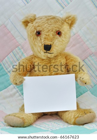 Teddy Bear with blank card for own message.