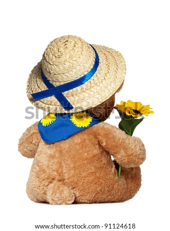 Teddy Bear with Hat and Sunflower Isolated On White