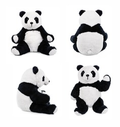 Teddy panda bear. Stuffed animal posing.