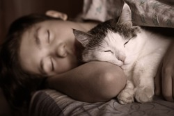 teen boy sleep with cat in bed hug close up photo