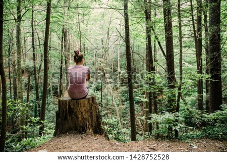 Teen Teen Girl Sitting on a Stump Looking Out into a green Forest full of trees