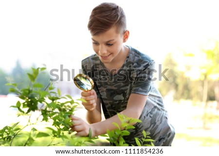 Teenage boy exploring bush outdoors. Summer camp