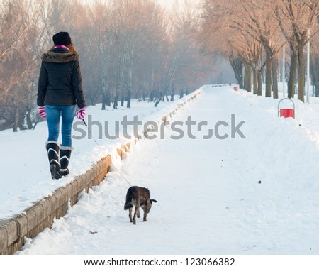Teenage girl walks the dog on snowy winter day.
