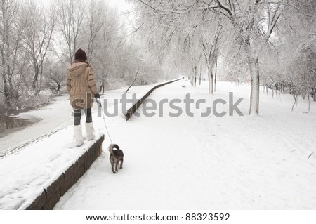 Teenage girl walks the dog on snowy winter day.