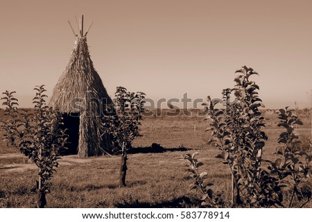 teepee aka wigwam in the field...