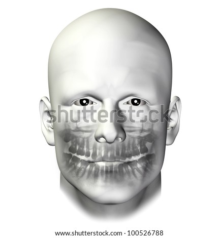 Teeth dental scan x-ray of adult male. 3d illustration on white background.