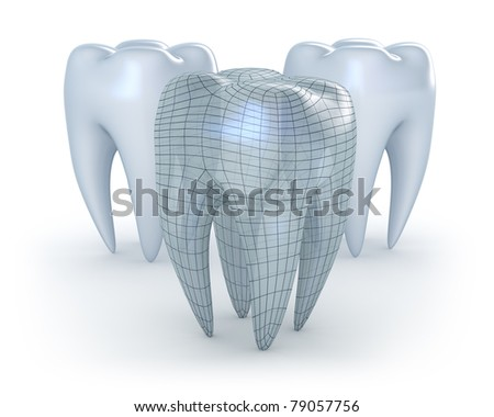 Teeth on white background. 3D concept