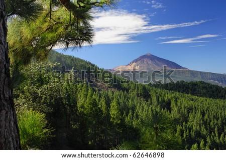 Teide mountain and Orotava valley, Tenerife, Spain