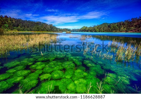 Telaga Warna Dieng is one of the tourism objects in the Dieng Plateau, Wonosobo Regency, Central Java.  This lake is one of the mainstay tourist destinations in Wonosobo Regency.