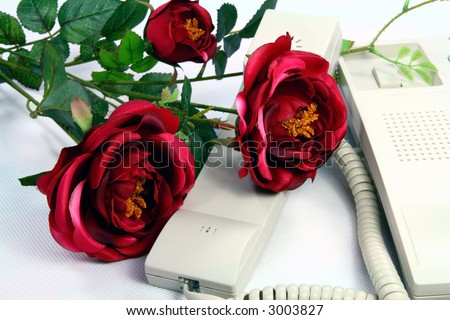 telephone and Rose