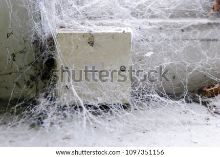 Telephone socket covered in cobwebs unused for years. - Shutterstock ID 1097351156