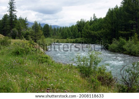 Tempestuous mountain stream in mountain by summer Foto stock ©