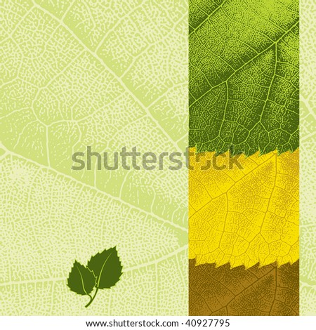 Template with leaf texture background and seasonal colors