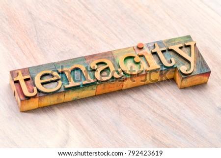 tenacity word abstract in letterpress wood type printing blocks Stock photo ©