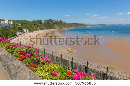 Tenby beach Wales uk in summer with tourists and visitors, blue sea and sky and colourful flowers in foreground