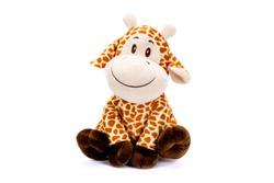 Tender baby giraffe sitting on white background
