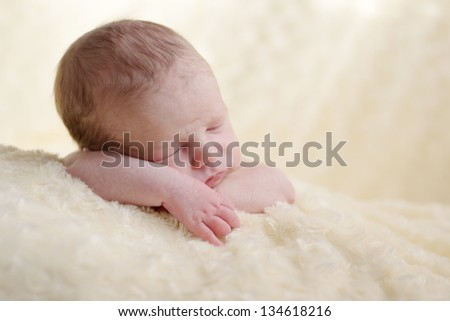 tender dreams of tiny newborn