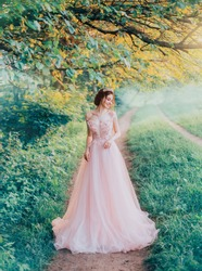 tender smiling girl, forest elf fairy walks at path, attractive young redhead cute bride long lush tulle pink dress to floor, creative colors blue green grass trees. queen crown. Glamour style fashion