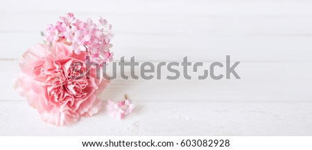 Tender still life with a pink carnation for mothers day or wedding in vintage style #603082928