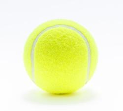 tennis ball isolate on white