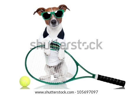 tennis dog with racket and glasses
