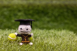 Tennis on graduation with ball and racket on green grass