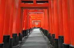 Tens of Thousands Red wooden Tori Gates to the Top of the Mountain at Fushimi Inari Shrine in Kyoto, Japan.