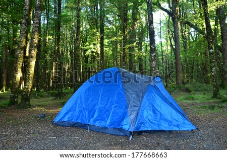 Tent Camping. Large blue tent in a middle of forest. outdoor and recreation .